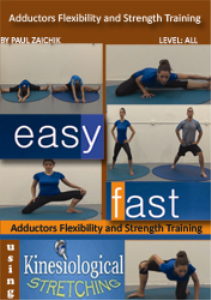 adductors flexibility and strength training