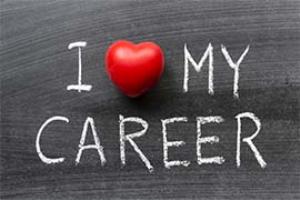 2016 ultimate career guide