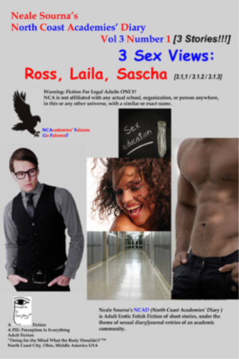 First Additional product image for - NCADv3n1_3 Sex Views: Ross, Laila, and Sascha [PDF]