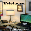 Telelucru | eBooks | Business and Money