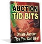 Auction Tid-Bits | eBooks | Internet