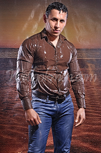 David Shiny Shirt | Photos and Images | Fashion