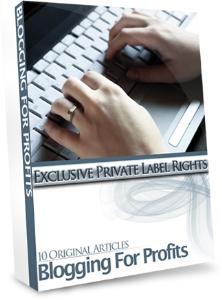 blogging for profits - bonus 10 articles