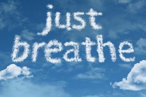soar to success minus the stress:breathing exercises
