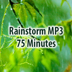 Relaxing Rainstorm (75 Minutes) | Music | Ambient