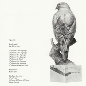 Gyr Falcon Plans | eBooks | Arts and Crafts