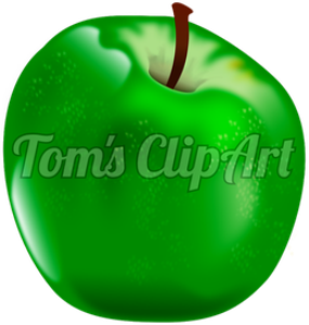 toms clipart - apple green