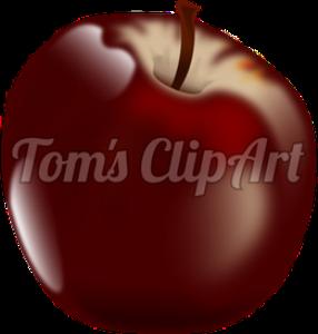 toms clipart - plum
