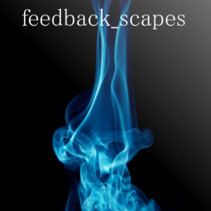 feedback_scapes