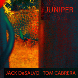 Juniper - Jack DeSalvo & Tom Cabrera (Apple Lossless CD Quality) | Music | Acoustic