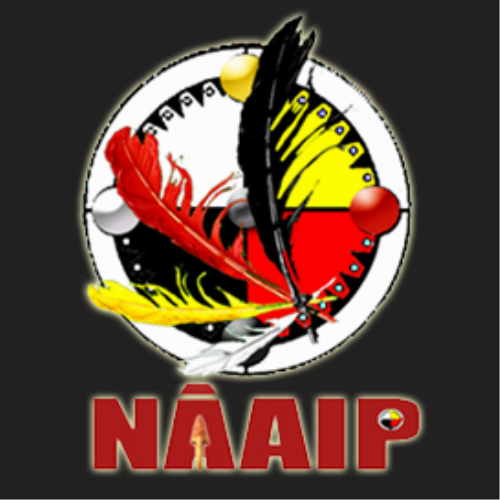 First Additional product image for - Naaip Study Guide 1