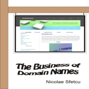 The Business of Domain Names | eBooks | Business and Money