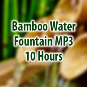 Bamboo Water Fountain (10 Hours) | Music | Ambient