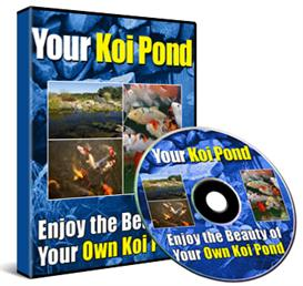 Everything  You Need To Know About Starting You Own Kio Pond (Audio Course)   Audio Books   Other
