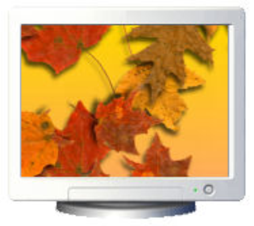 First Additional product image for - Fall Leaves Screensaver