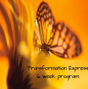 6 Week Transformation Express | Audio Books | Podcasts