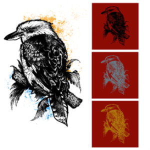 Kookaburra Vector Illustration | Photos and Images | Digital Art