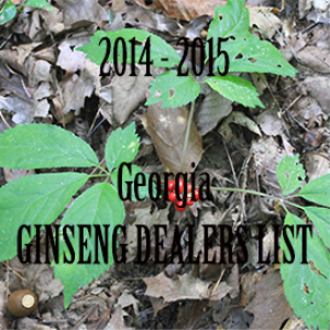 2014 georgia ginseng dealers list
