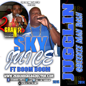 Sky Juice Metro Media Feat Boom Boom Music Cd | Music | Reggae