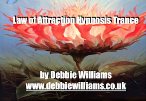 Second Additional product image for - Law of Attraction Hypnosis