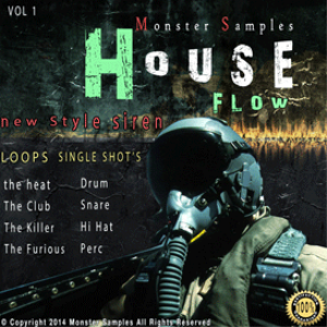 house folw vol 1