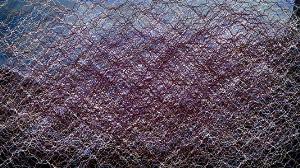 organic mesh