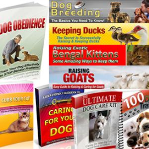 animal-care-training-breeding