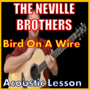Learn to play Bird On A Wire by The Neville Brothers | Movies and Videos | Educational