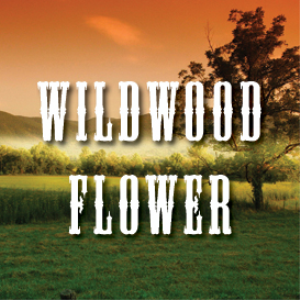 wildwood flower full tempo backing track