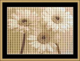 Soft Daisy | Crafting | Cross-Stitch | Wall Hangings