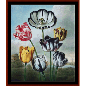 tulip - floral cross stitch pattern by cross stitch collectibles