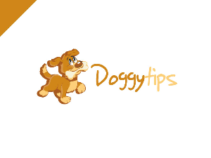 doggytips book bundle special offer
