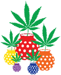 Marijuana Leaves in Polka Dotted Vases | Photos and Images | Miscellaneous