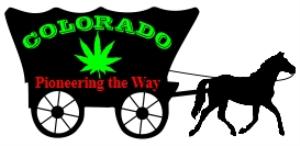 colorado pioneering the marijuana way