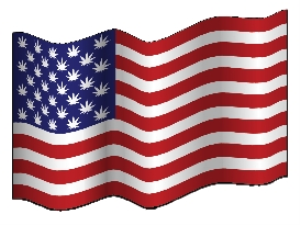 American Marijuana Leaf Starred Flag | Photos and Images | Miscellaneous