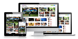 videnox-php premium video sharing scripts