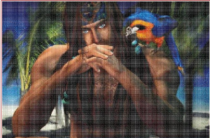 Pirate | Crafting | Cross-Stitch | Other