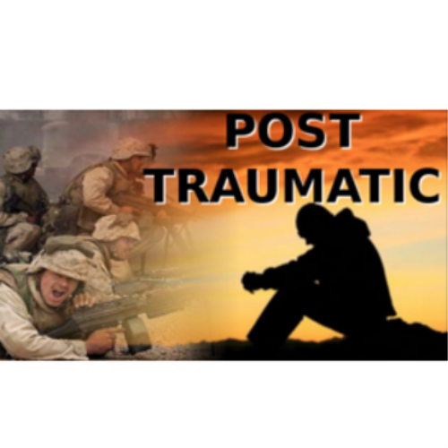 First Additional product image for - V3 - Ptsd