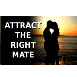 450 - Pick the Right Mate | Audio Books | Meditation