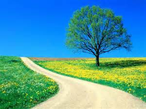30 amazing nature around the world super hd widescreen wallpapers