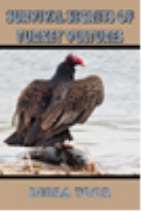 First Additional product image for - Survival Secrets of Turkey Vultures
