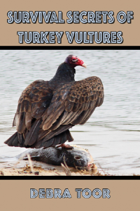 Survival Secrets of Turkey Vultures | eBooks | Children's eBooks
