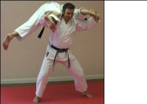 Funakoshi's Throws | Movies and Videos | Training