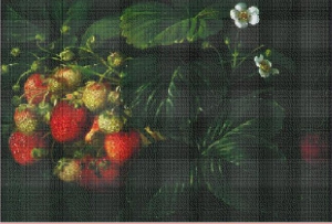Strawberries (Jahody) | Crafting | Cross-Stitch | Other