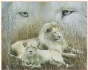 White lions (Bili lvi)   Crafting   Cross-Stitch   Wall Hangings