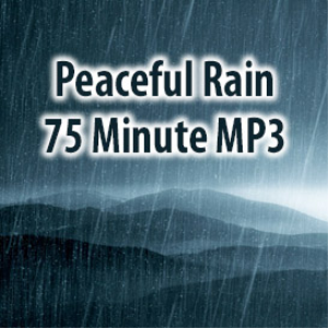 Peaceful Rain MP3 (75 Minutes) | Music | Ambient