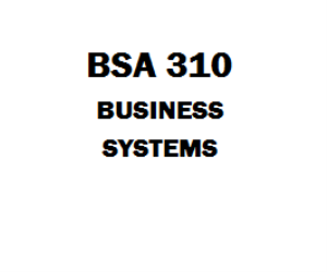 BSA 310 Business Systems | eBooks | Education
