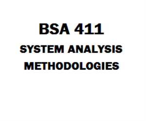 BSA 411 Systems Analysis Methodologies | eBooks | Education