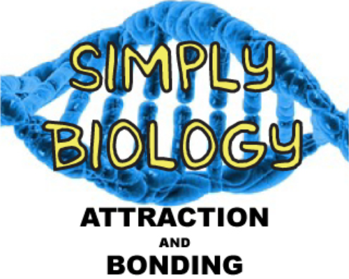 Second Additional product image for - Attraction And Bonding