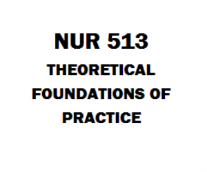 NUR 513 Theoretical Foundations of Practice | eBooks | Education